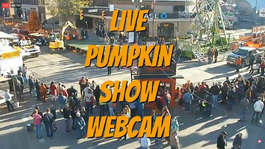 Pumpkin Show Live Webcam 2018