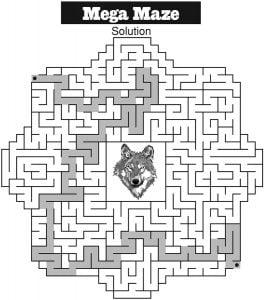 Mega Maze Solution