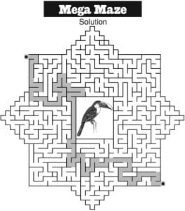 Mega Maze January 2019