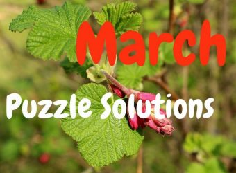 March Puzzle Answers