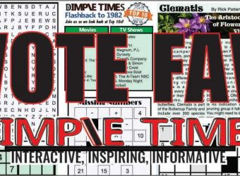 Vote favorite part of Dimple TImes newspaper