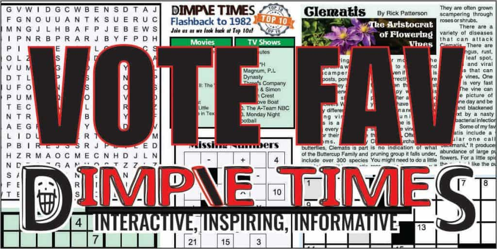 Vote what you like best about Dimple Times newspaper