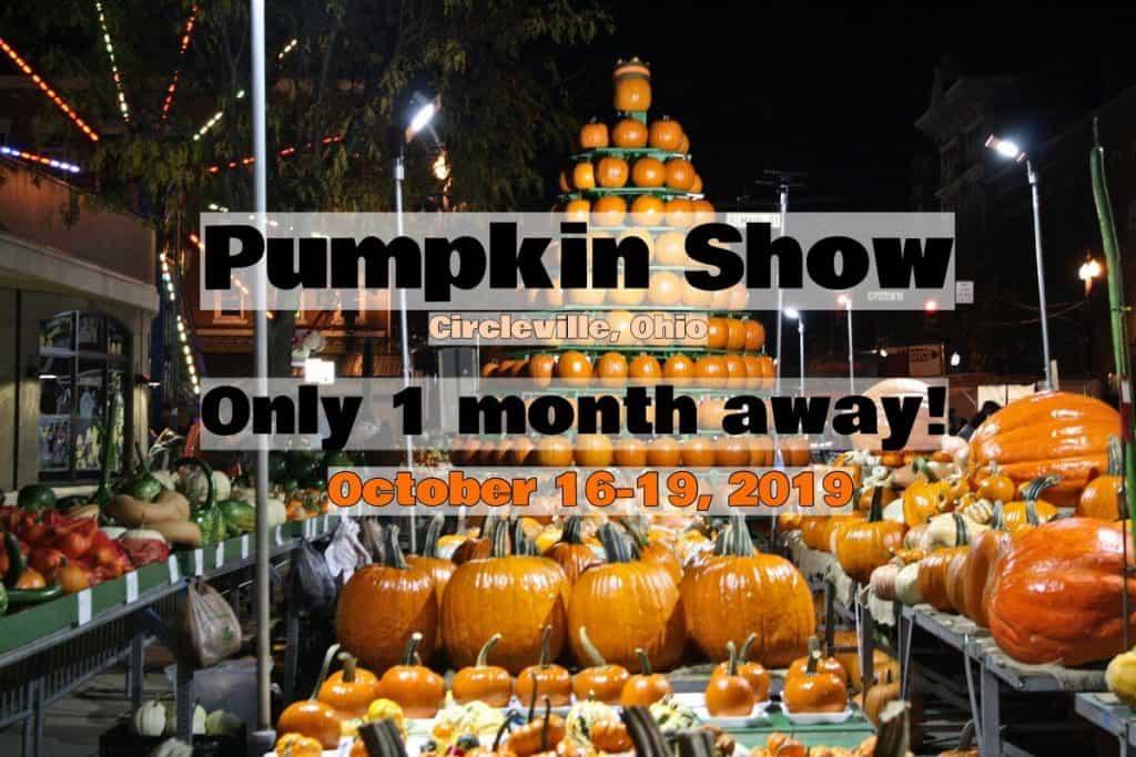Pumpkin Show 2019 kicks off in 1 month