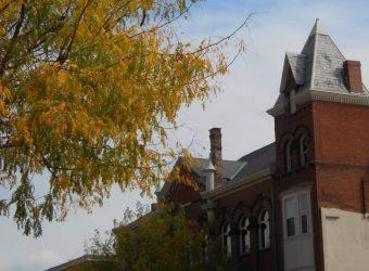 Autumn leaves change color Circleville