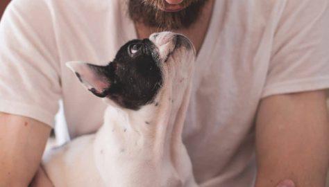 Benefit of Pet Ownership