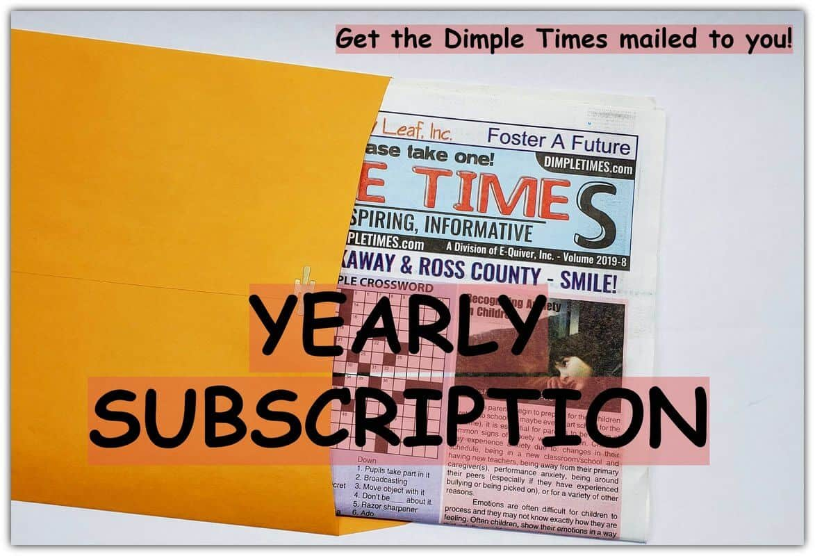 Yearly Dimple Times Subscription