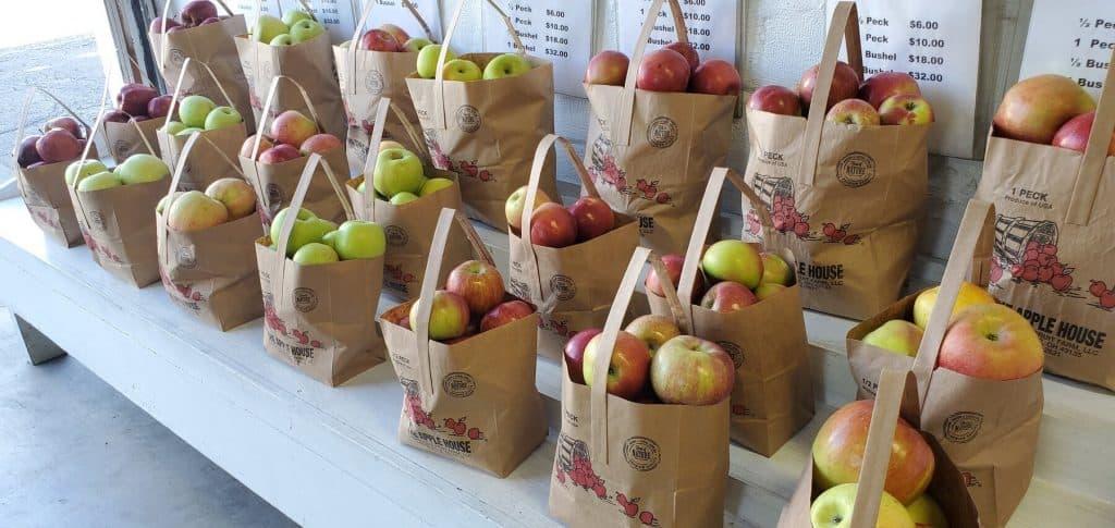 Apple Pecks at Laurelville Fruit Co.