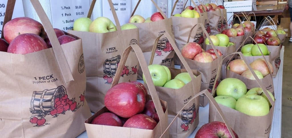 Embrace fall with a trip to local fruit farm for delicious cider