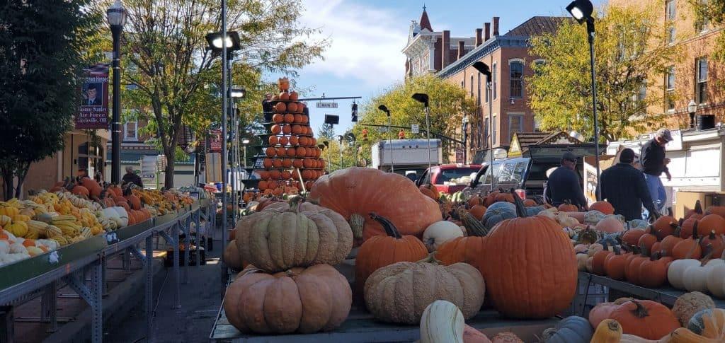 Pumpkin Area Set Up at 2019 Circleville Pumpkin Show