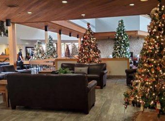 Christmas Trees at Deer Creek Lodge