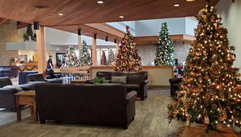 Christmas Trees at Deer Creek Lodge