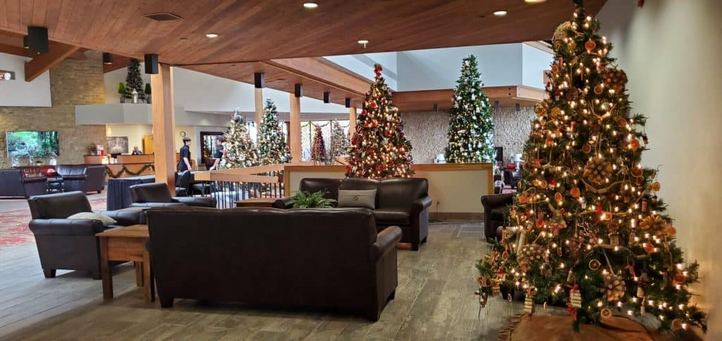Christmas trees are on display at Deer Creek Lodge