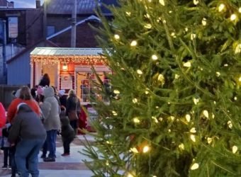 Christmas tree lit-up in Pumpkin Show Park