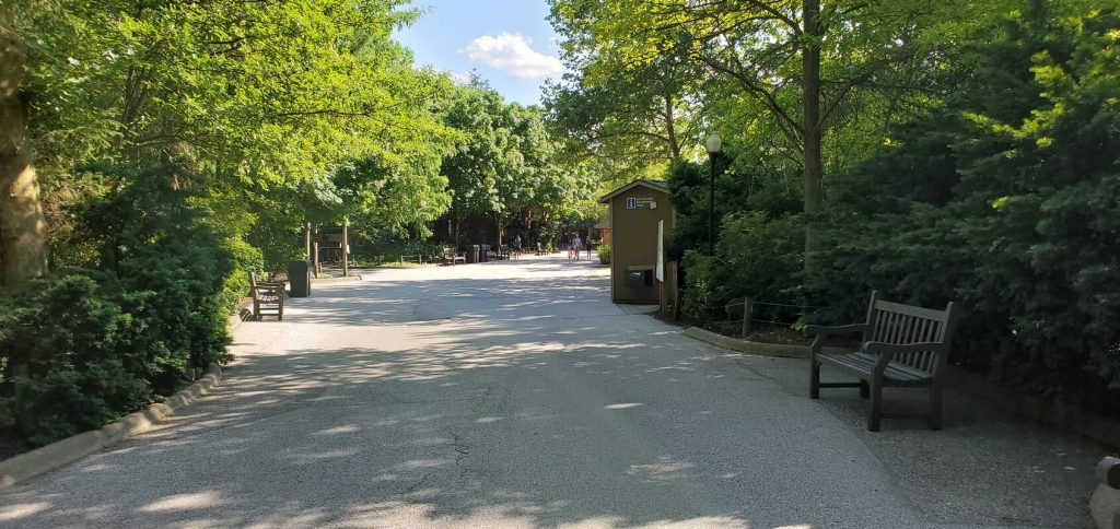 Walking in the zoo after covid-19