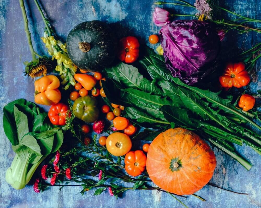 Creating the perfect kitchen garden