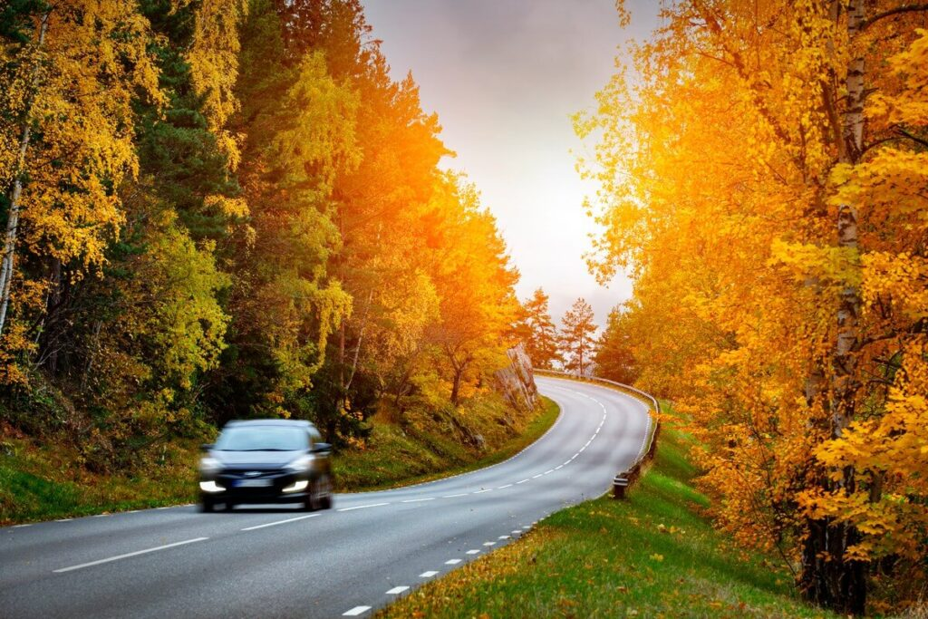 Tips to Take a Safe and Affordable Fall Road Trip