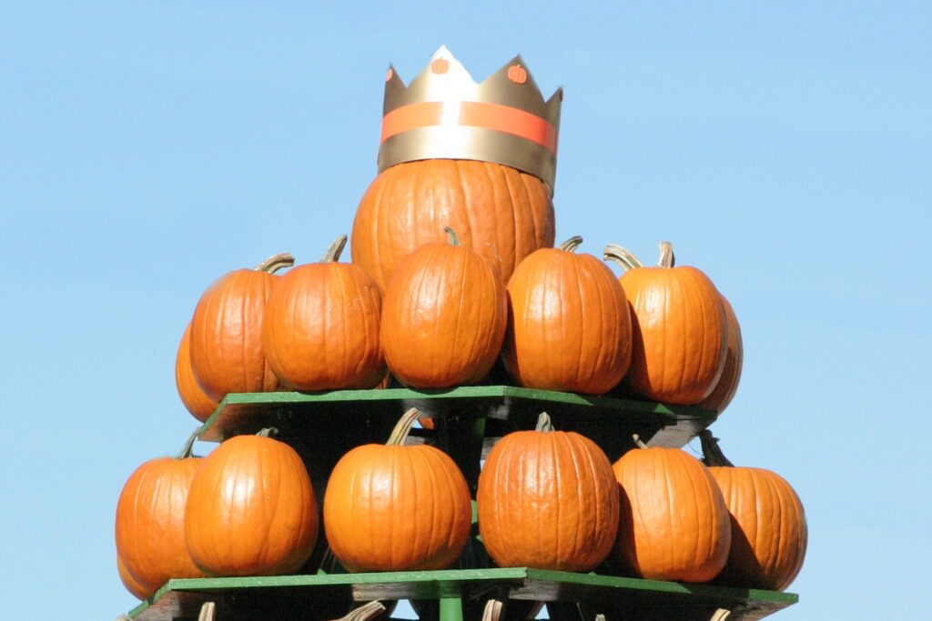 What's So Great About Pumpkins?