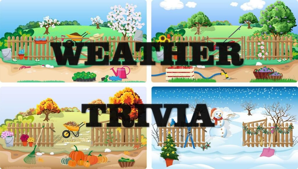Pick the weather word – Trivia