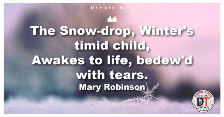 Mary Robinson quote