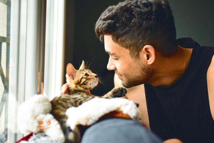 Expert tips for welcoming a kitten