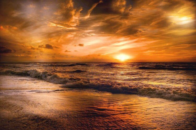 Feel the Peacefulness